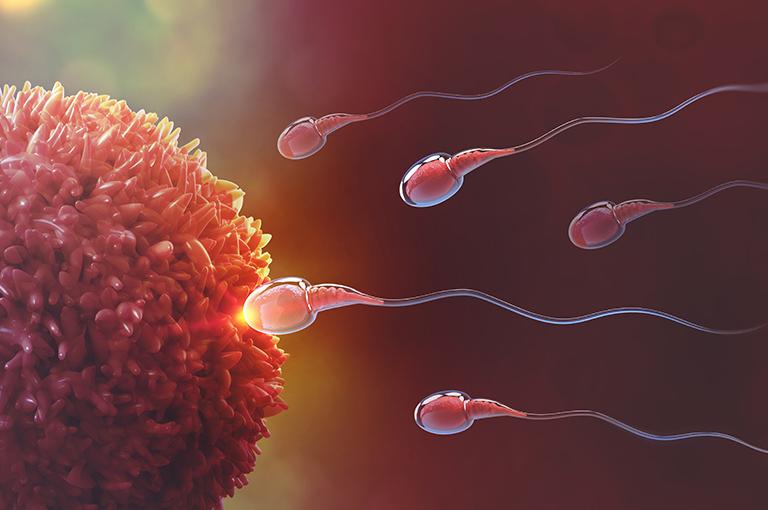 ovulation-les-5-signes-qui-lannonce