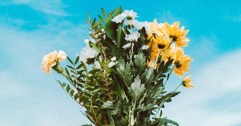 5-facons-de-profiter-du-printemps-cette-annee